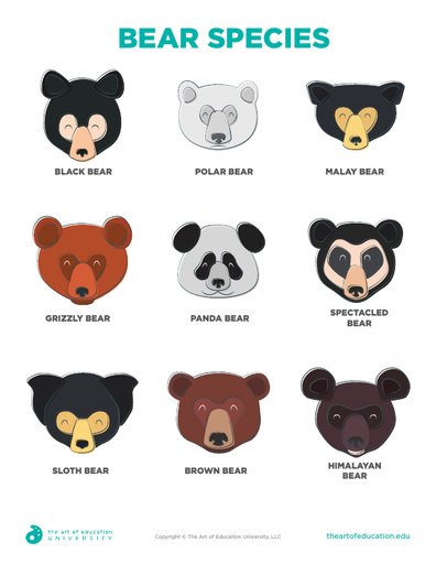 Bear Species - FLEX Resource