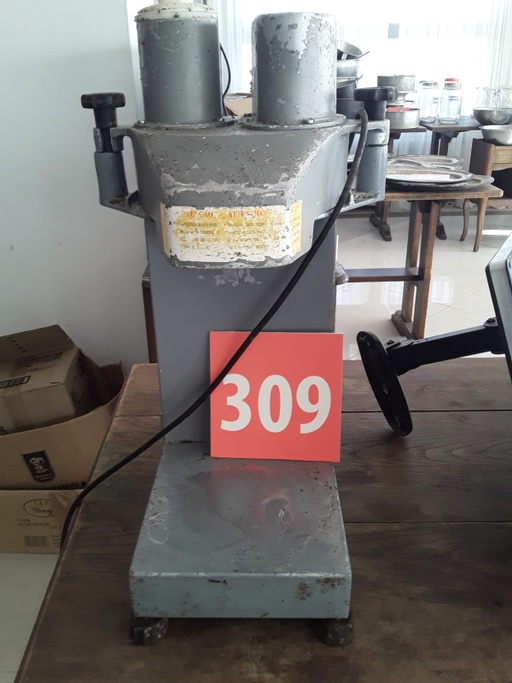 Lote 309