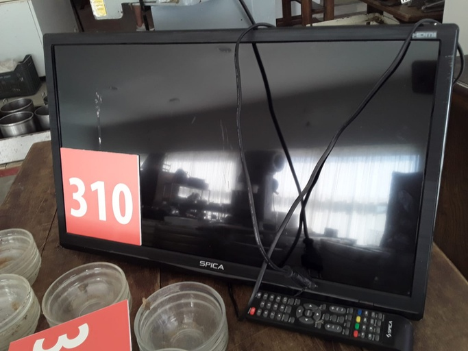 Lote 310
