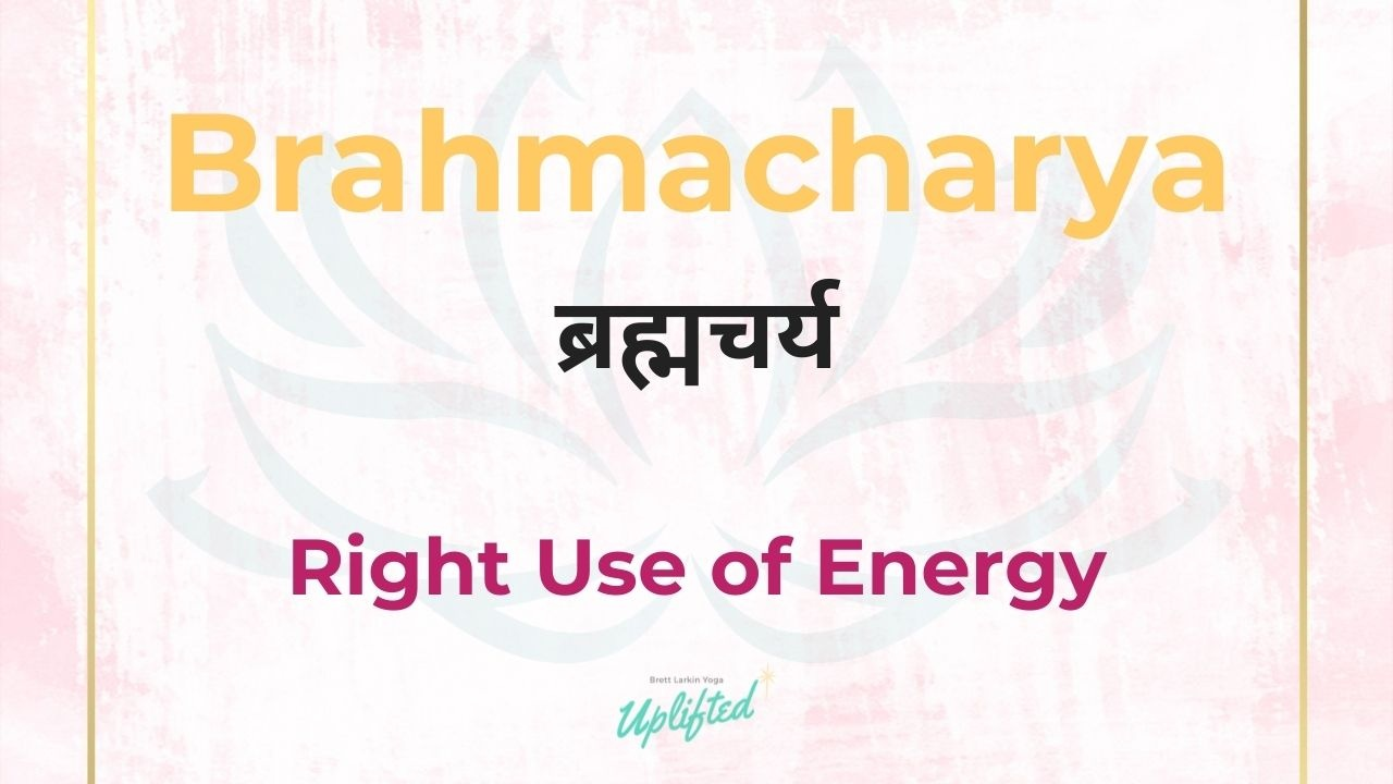 """Brahmacharya can be iterpreted as """"right use of energy"""""""