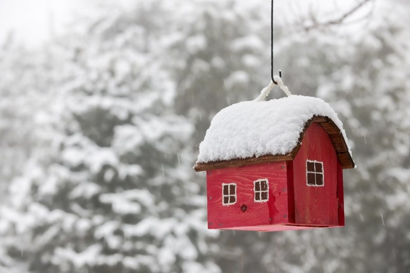 Every landlord's guide to managing property during winter