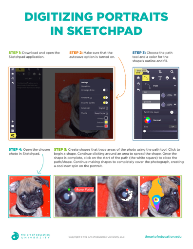 Digitizing Portraits in Sketchpad - FLEX Assessment