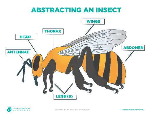 Abstracting an Insect - FLEX Assessment