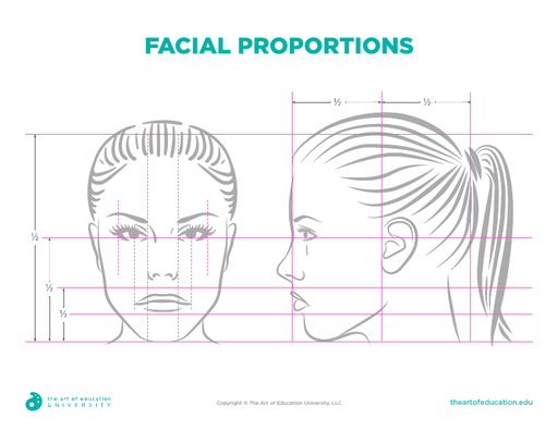 Facial Proportions - FLEX Assessment