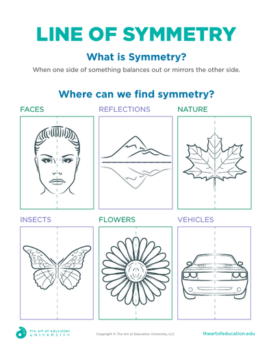 Line of Symmetry - FLEX Assessment