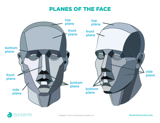 Planes of the Face - FLEX Assessment