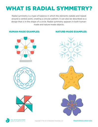 What is Radial Symmetry? - FLEX Assessment