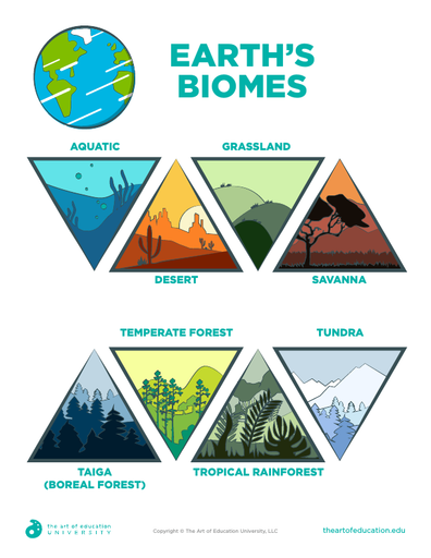 Earth's Biomes - FLEX Assessment