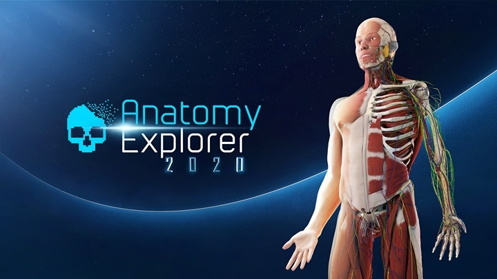 Anatomy Explorer 2020