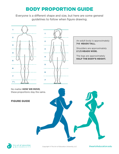 Body Proportion Guide - FLEX Assessment