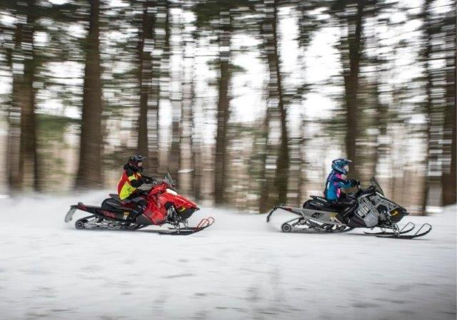 guests riding snowmobiles past trees