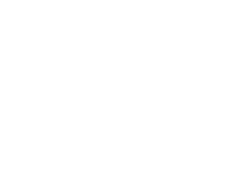 Accelity _Firstbase.io