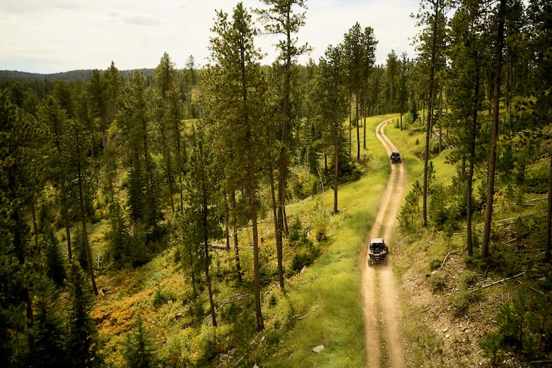 aerial-view-of-rzrs-driving-in-woods-at-Spearfish-Canyon Resort