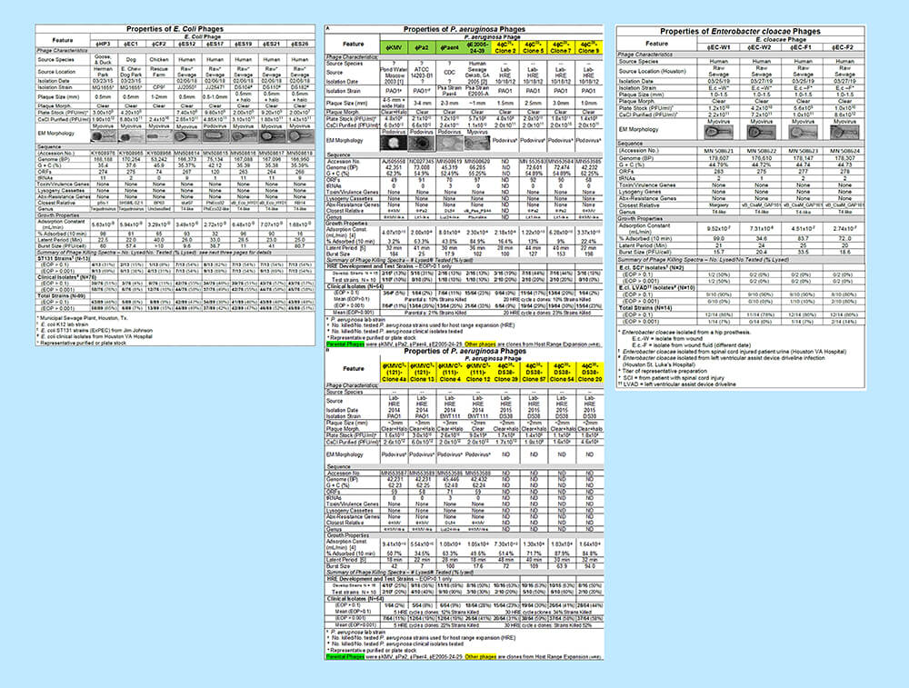 The full image of the phage characterization charts side by side