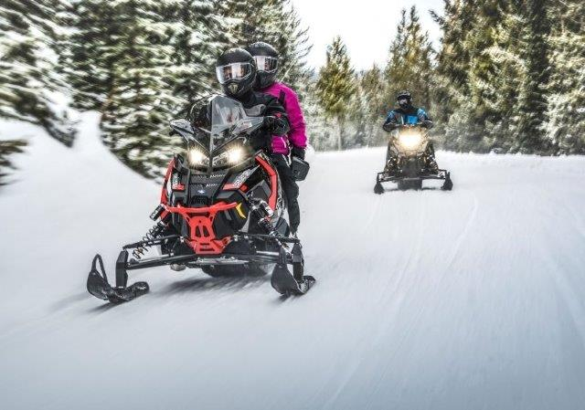 guests on snowmobiles riding through trees