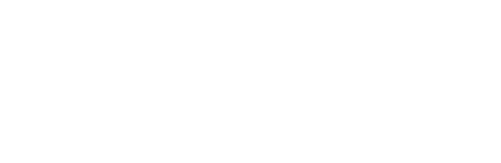 Modern Synthesis