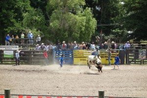 Rodeo in New Zealand