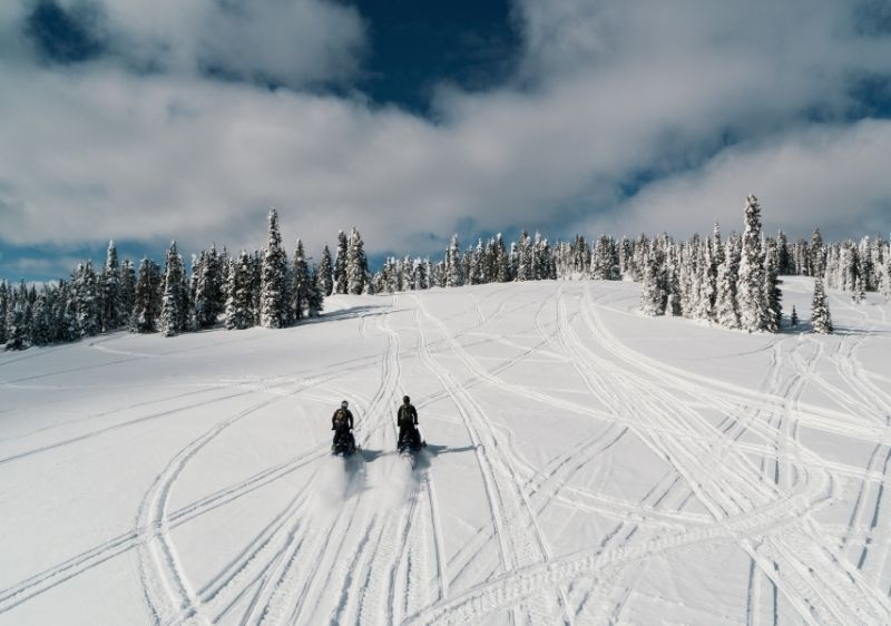 guests riding snowmobiles up a mountainside1