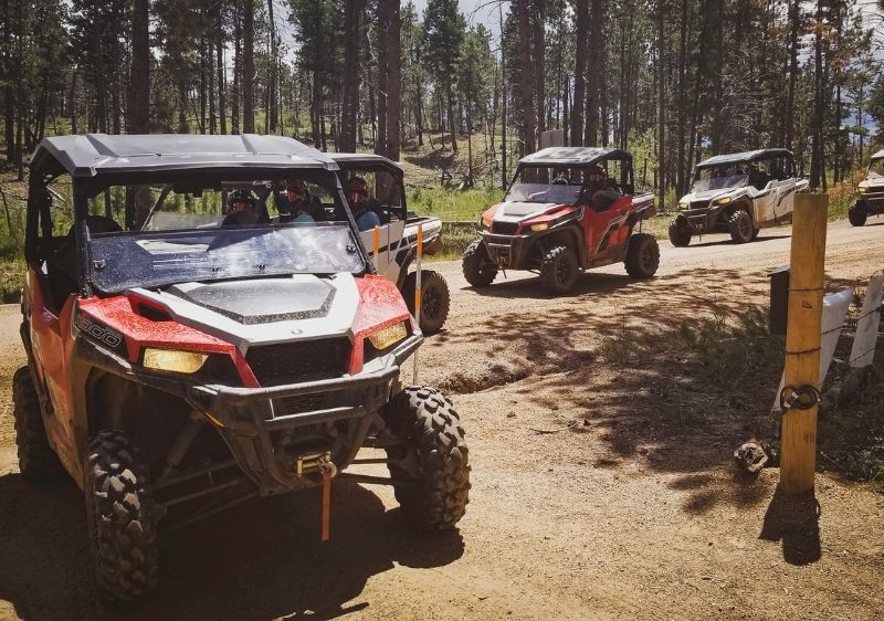guests in off-road vehicles touring through forest
