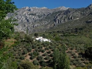 Our Cortijo from the road leading to it, near Balmez de Moraleda, Sierra Magina, Spain