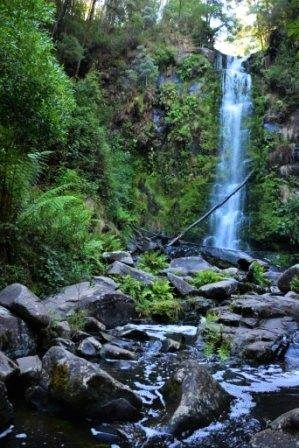 from the bottom of erskine falls