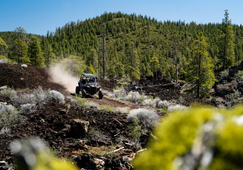 guest-driving-a-Polaris-RZR-on-a-rocky-trail-surrounded-by-trees