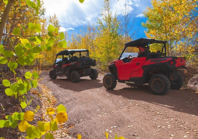 guests driving off-road vehicles through forest