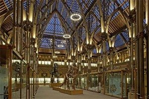 The stunning main room of the Oxford Museum of Natural History