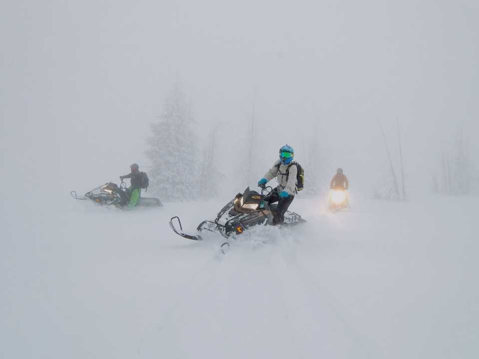 group of snowmobilers driving mid snowfall