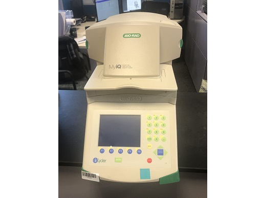 Bio-Rad iCycler MyIQ PCR / Thermal Cyclers