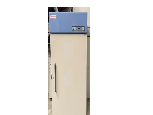 Thermo Fisher Scientific ULT3030A -30 Freezer