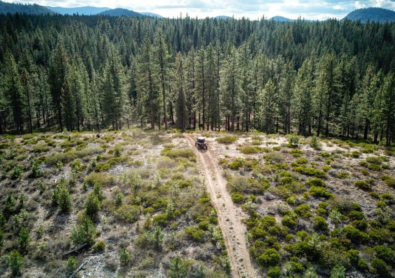 aerial-view-of-Polaris-RZR-driving-along-the-trail-into-the-forested-area