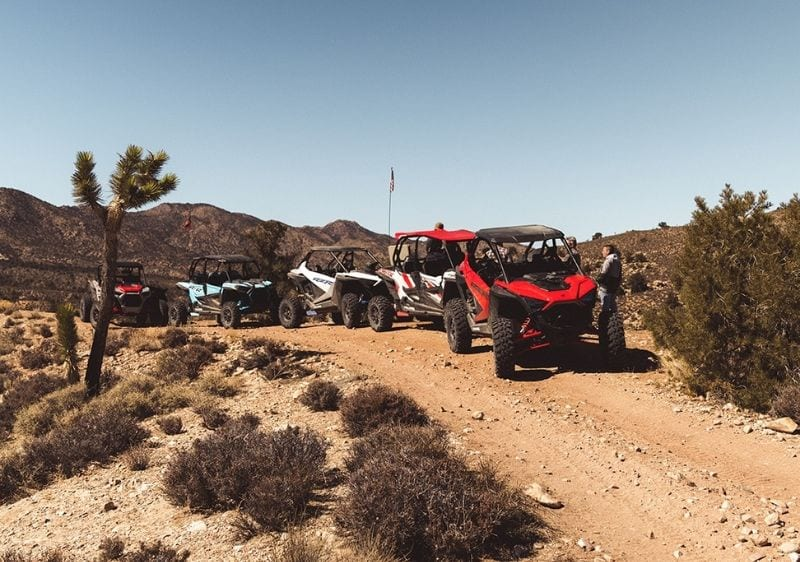 group of guests and off road vehicles in the middle of the desert