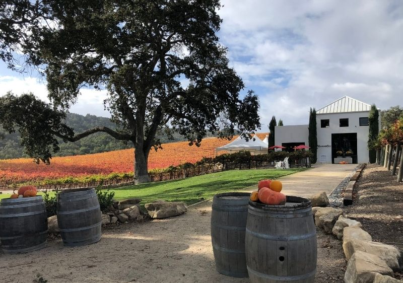 winery with scenic vineyard view