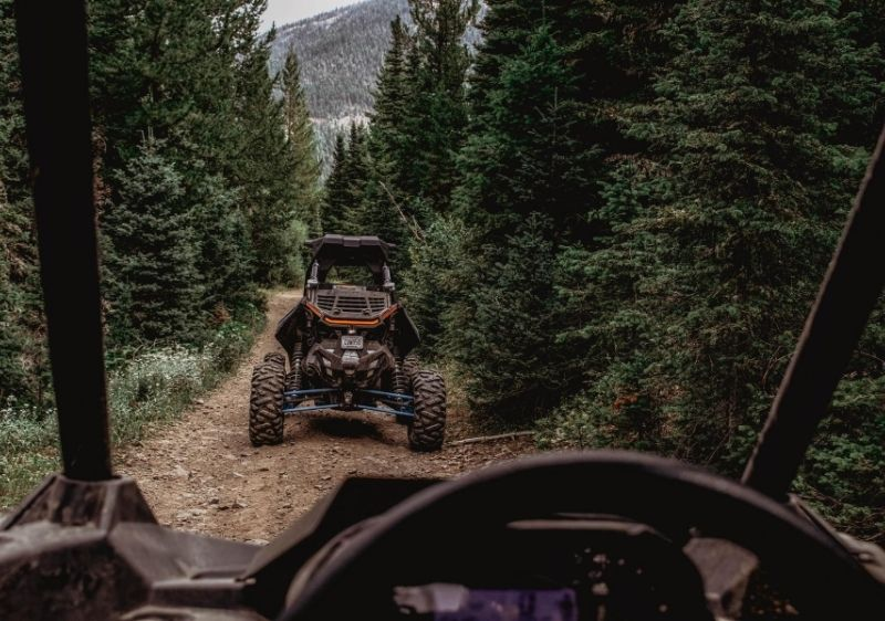 Polaris-RZRs-driving-through-tall-trees