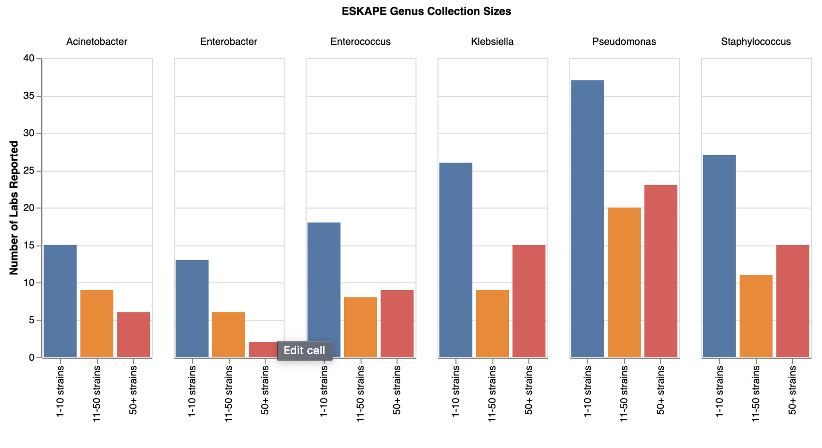 Strain Eskape Collection Sizes