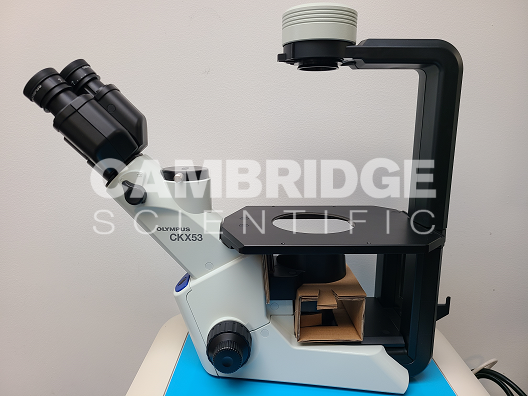 Olympus CKX53SF Inverted Phase Contrast Microscope