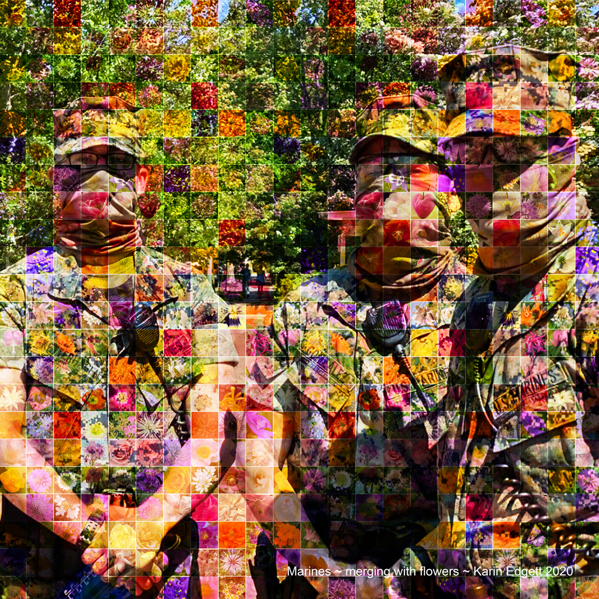 Marines ~ merging with flowers