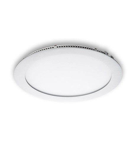 Large Downlight
