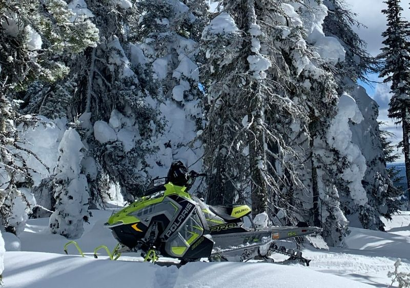 Polaris-snowmobile-parked-by-snow-covered-pine-trees1