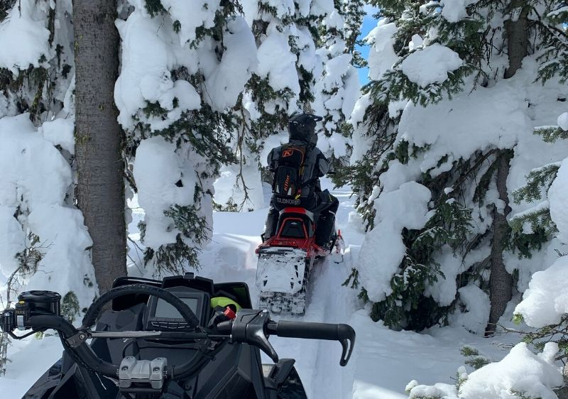 guests-riding-Polaris-RMK-Snowmobiles-through-snow-covered-trees