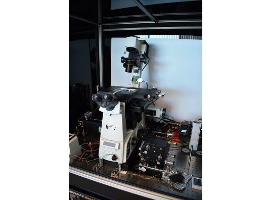 Nikon Eclipse Ti-E Inverted Phase Contrast Fluorescent Microscope