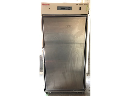 Thermo Forma 3950 Reach In CO2 Incubator