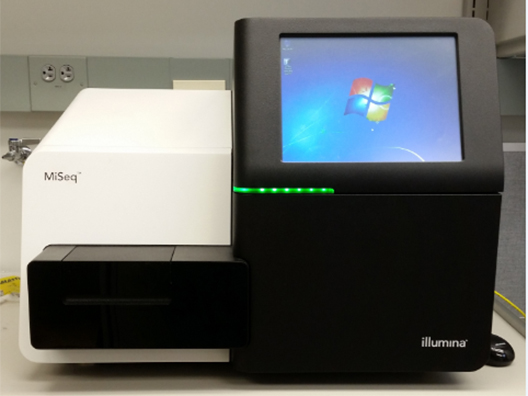 Illumina MiSeq Genome Sequencer