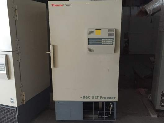 Thermo Fisher Scientific 8523 -80 Freezer