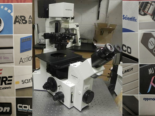 Olympus IX70 Inverted Phase Contrast Microscope