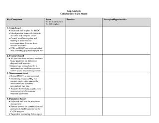 Gap AnalysisCollaborative Care Model
