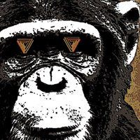 The Infinite Monkey Theorem logo
