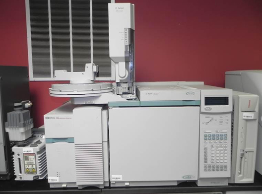 Agilent 6890 Plus Gas Chromatograph w/ 5973 Mass Spec and 7683 Autosampler GC/MS