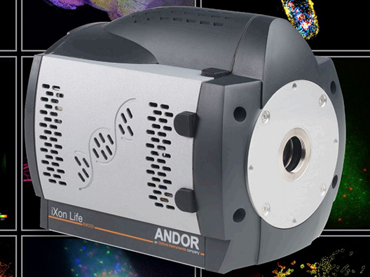 Andor Technology iXon Life 897 EMCCD *NEW* Microscope Camera